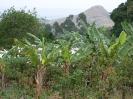 Kamerun_13