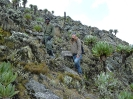 Mount Elgon_6