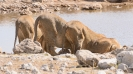 Namibia_16