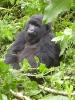 Begegnungsreise nach Uganda_2